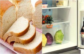Cách khử mùi tủ lạnh lâu ngày không dùng (p3)