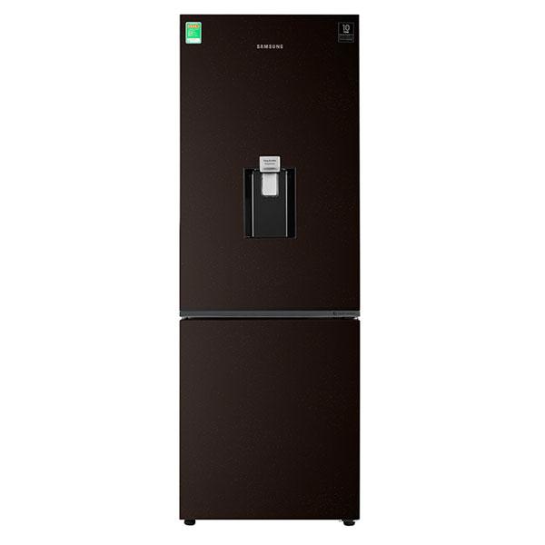 Tủ Lạnh SAMSUNG Inverter 307 Lít RB30N4170BY