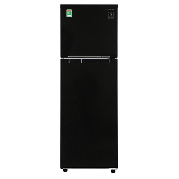 Tủ Lạnh SAMSUNG Inverter 256 Lít RT25M4032BU